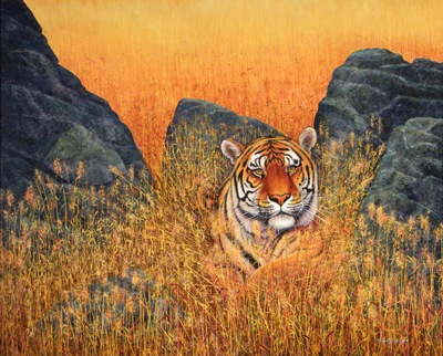 Tiger, Tiger At Rest, oil painting by Frank Wilson