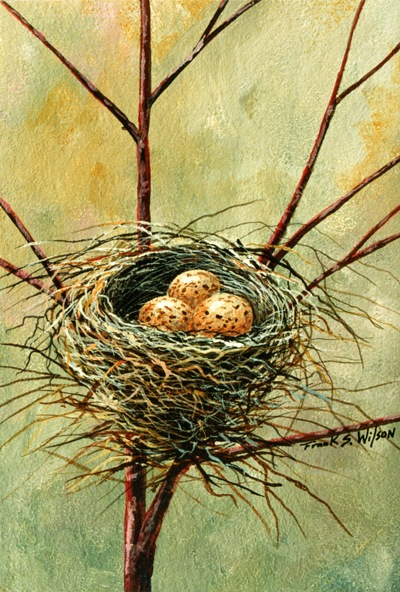 Bird Nest, bird nest painting by Frank Wilson