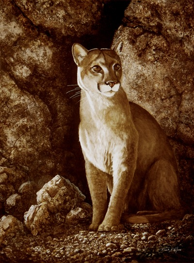 Cougar, Mountain lion, Wait Until Dark, oil painting byFrank Wilson
